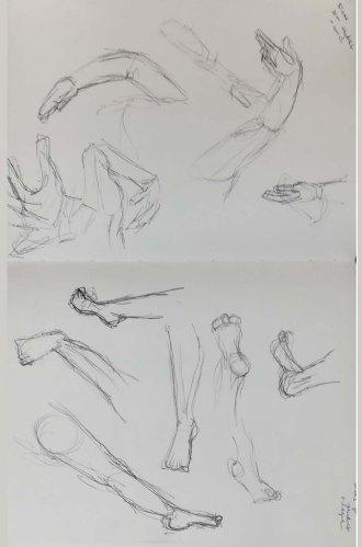 studies 2